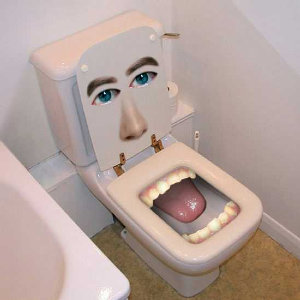 Image result for a picture of the a president's toilet bowl